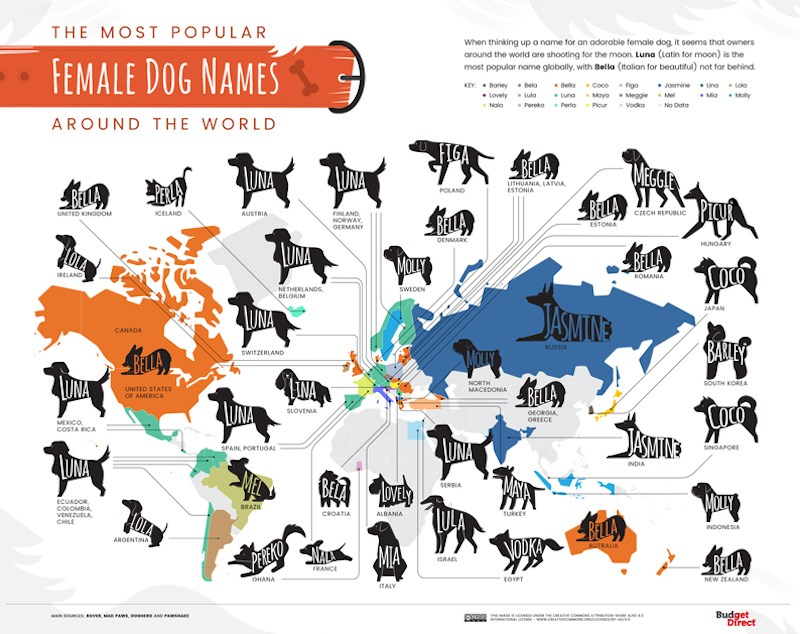 01-The-Most-Popular-Dog-Names-Around-the-World_Map-Female