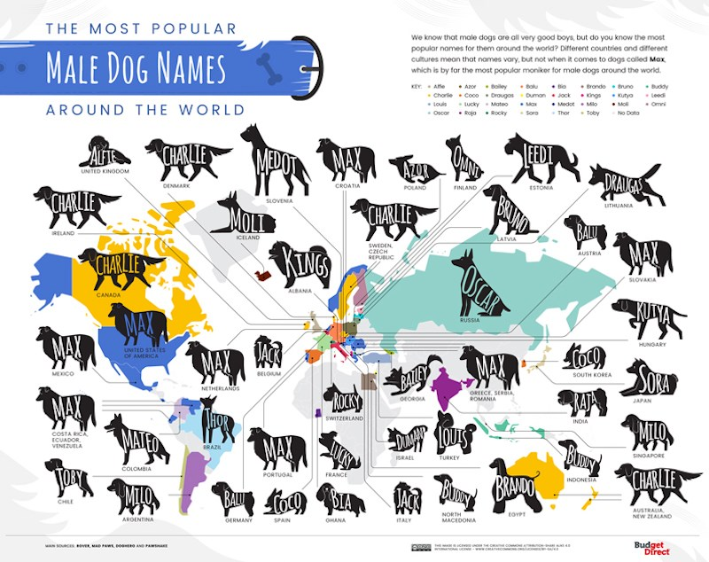 03-The-Most-Popular-Dog-Names-Around-the-World_Map-Male