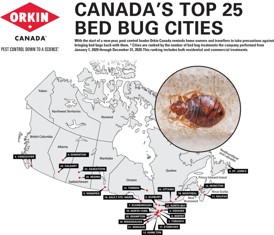 Bed-Bug-Canada-cities-2020-v2-min-1536x1313