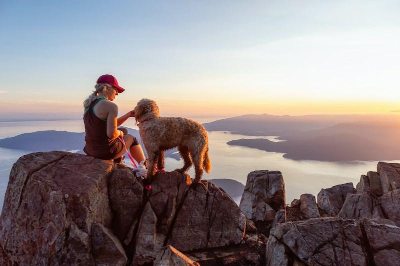 dog-hiking-vancouver-bc