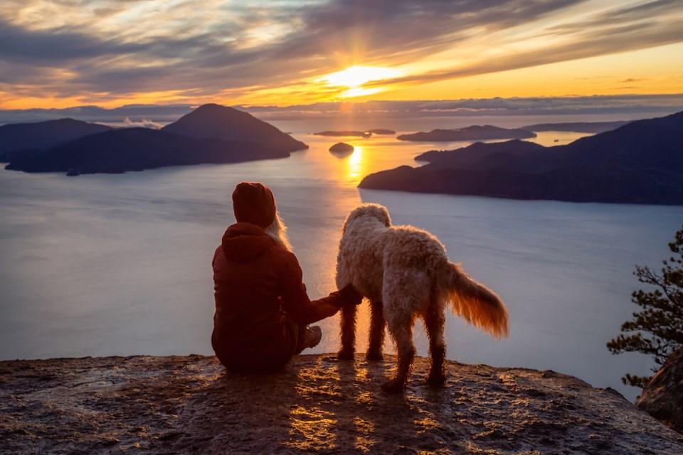 dog - sunset hike near vancouver