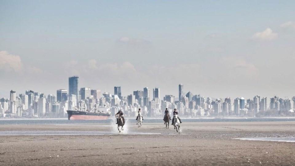 horses-vancouver-beach