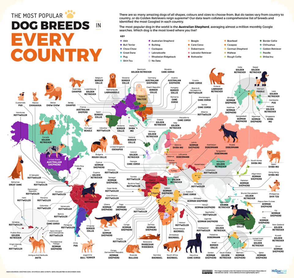 most-popular-dog-breeds-every-country.jpg