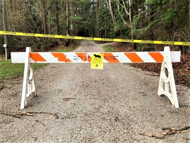 Stanley Park trails closed due to aggressive coyote - vancouver park board
