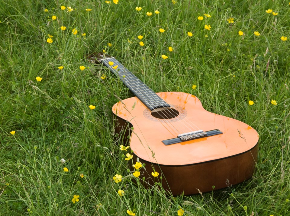 Guitar-grass-park-ProjectB-GettyImages-124618575