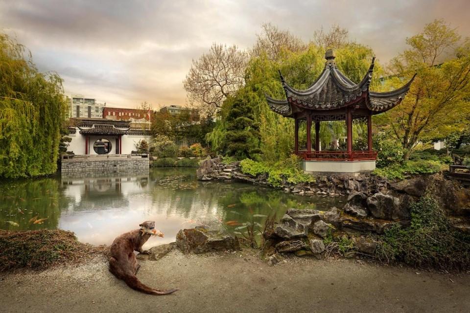 otter-sun-yet-san-chinese-garden