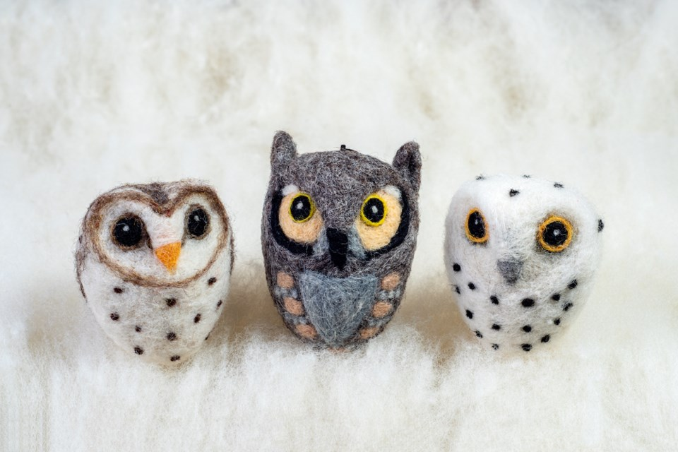 SpectacledBearConservationSociety.OWLS.LANDSCAPE