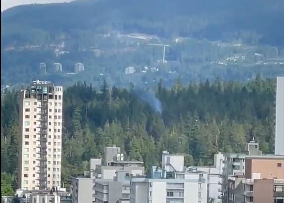 Stanley Park Tree fire - Vancouver - Saturday June 12 - twitter screenshot
