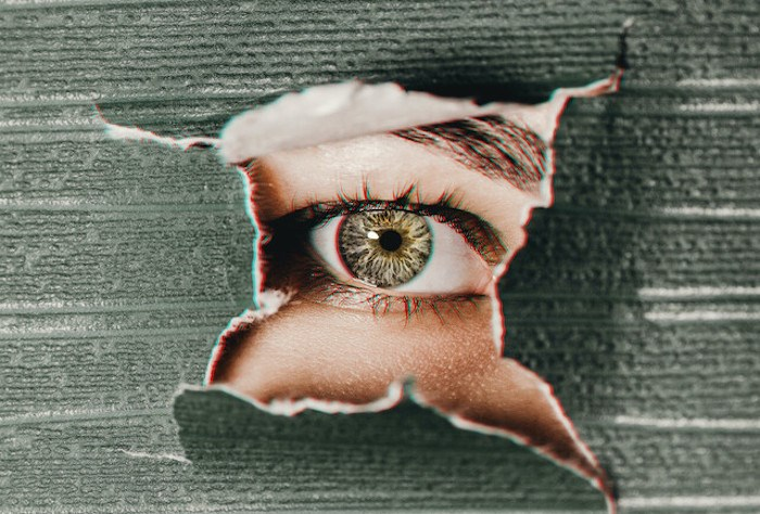 brown-human-eye-287305edit_p3470448