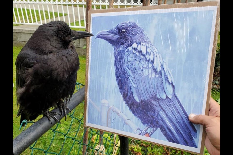 More than 40 Canuck the Crow art pieces hang on the walls of Shawn Bergman's home, created by his many fans. This art piece was created by Sherry Klassen. Photo: Supplied by Shawn Bergman