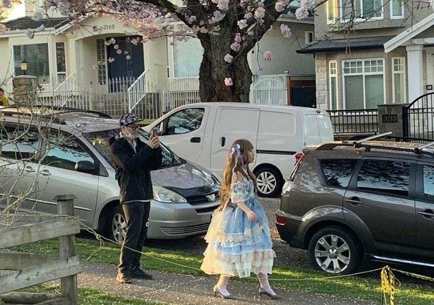 cherry-blossom-madness-dress