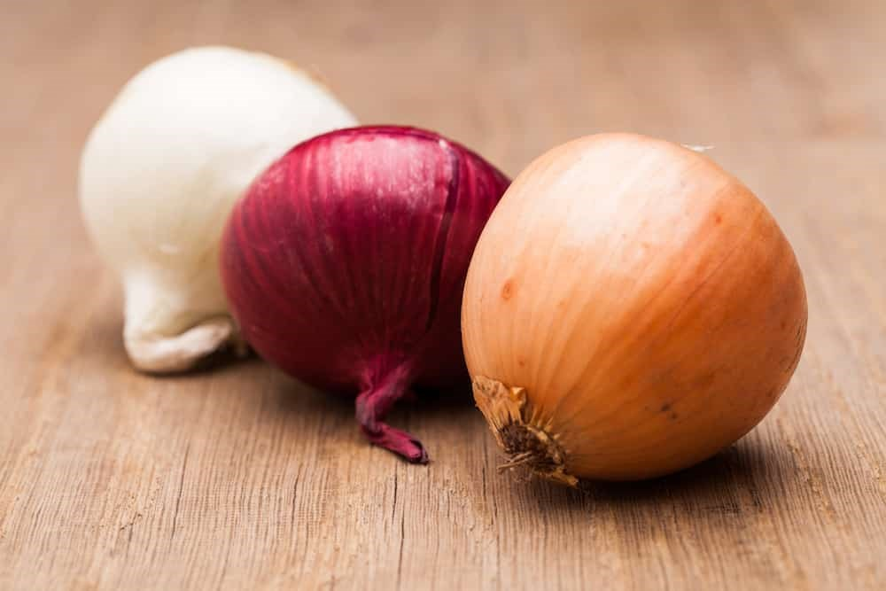 Public health alert: 506 confirmed cases of Salmonella in Canada linked to onions