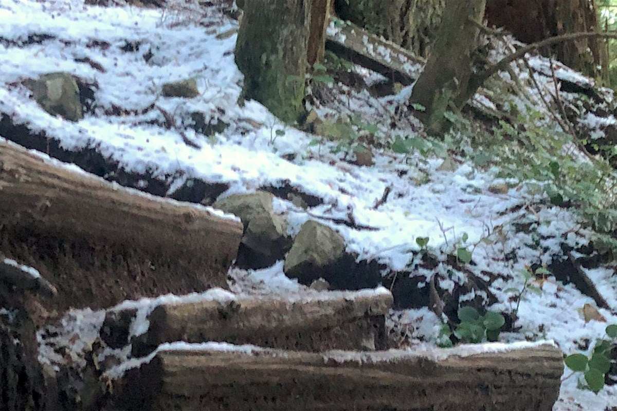 'Unsafe icy weather' sees Grouse Grind remain closed Monday