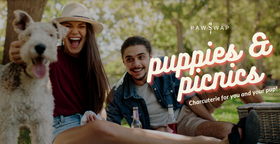 puppies and picnics vancouver