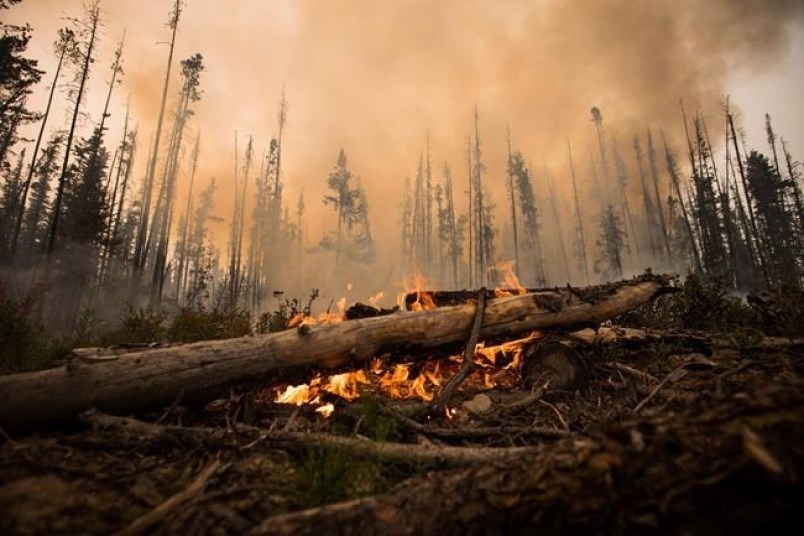 ubc-researchers-health-authorities-map-health-impacts-climate-change