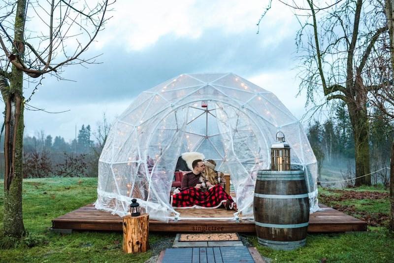 singletree-winery-di-vine-domes-wine-tasting