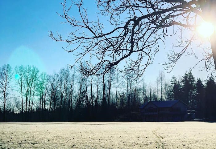 frost-winter-sun-cold-vancouver