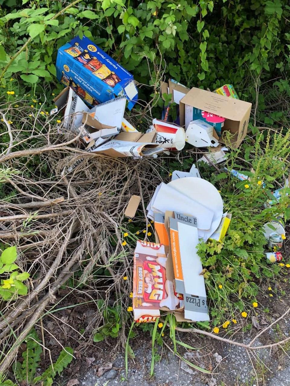 garbage-dumped