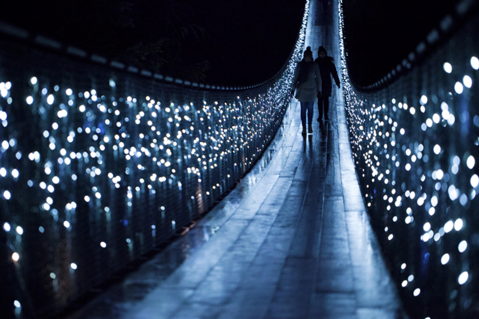 Canyon Lights 2020 has been cancelled due to COVID-19 restrictions in B.C. Image courtesy of the Capilano Suspension Bridge Park