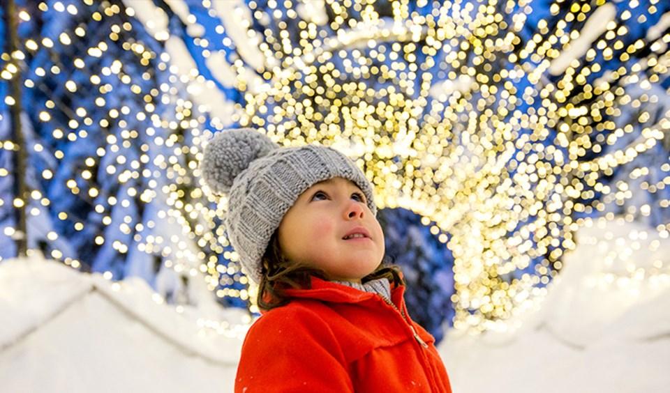 peak-of-christmas-web-light-walk