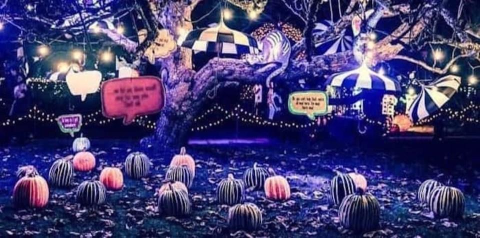 van-dusen-glow-in-the-garden-new