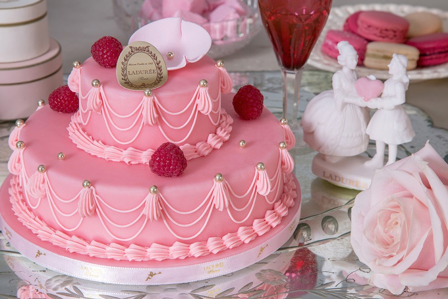 Marie Antoinette Rose Raspberry