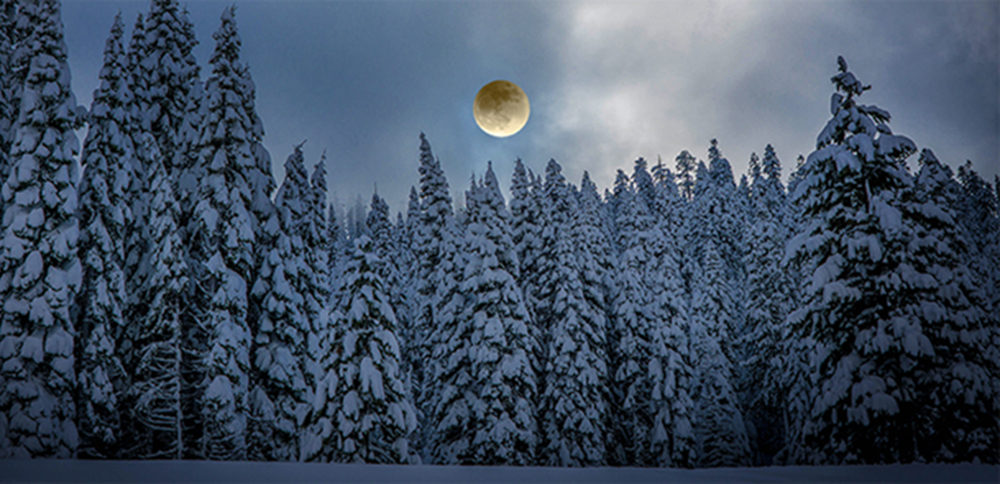 You can explore Grouse Mountain after dark on a moonlit snowshoe adventure