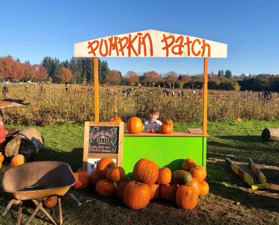 aldor acres family farm pumpkin patch langley
