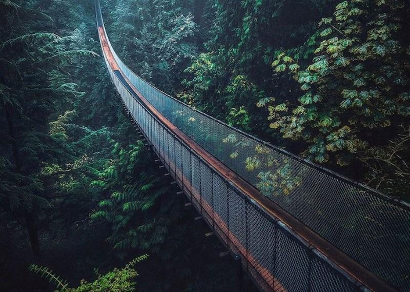 Capilano-Suspension-Bridge-North-Vancouver-BC
