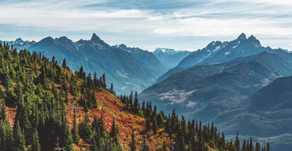 The stunning Elk Mountain trail. Photo: @stasher_bc via Instagram