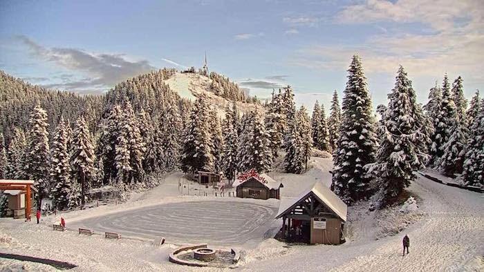 peak-christmas-grouse