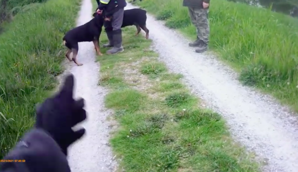 racist-confrontation-metro-vancouver-trail-dogs.jpg