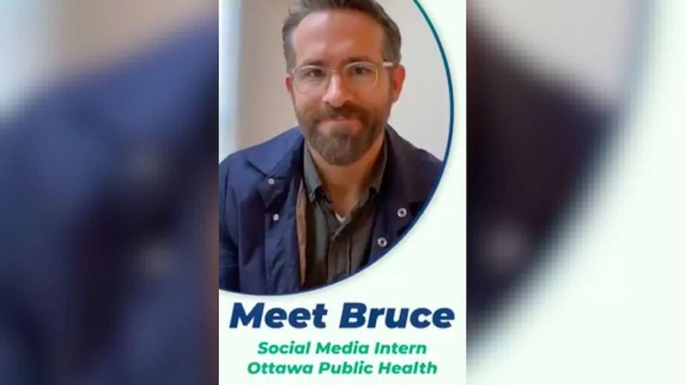 ryan-reynolds-bruce-intern-ottawa-public-health-superbowl-tweet