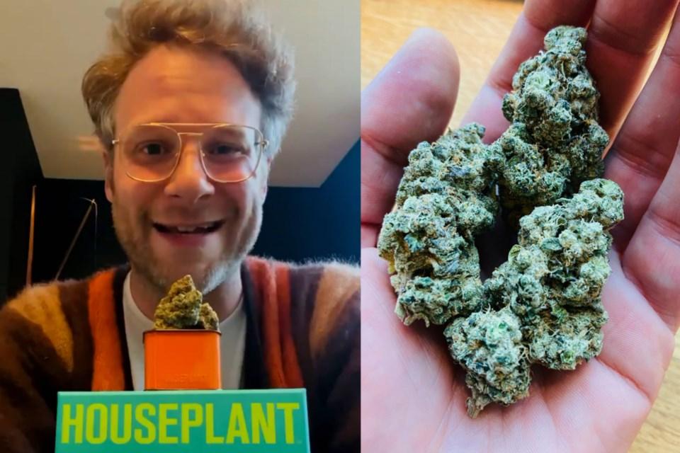 Seth Rogen cannabis