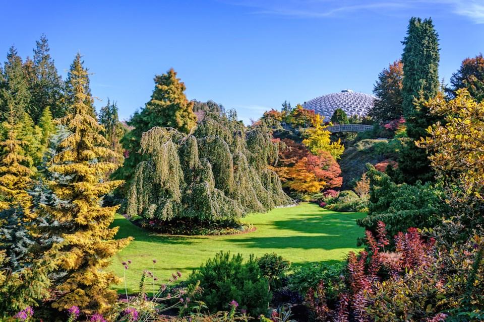 Queen Elizabeth Park, Vancouver. Getty Images