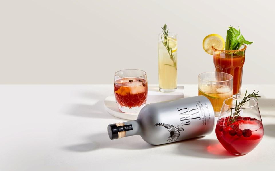 gray-jay-drink-shots