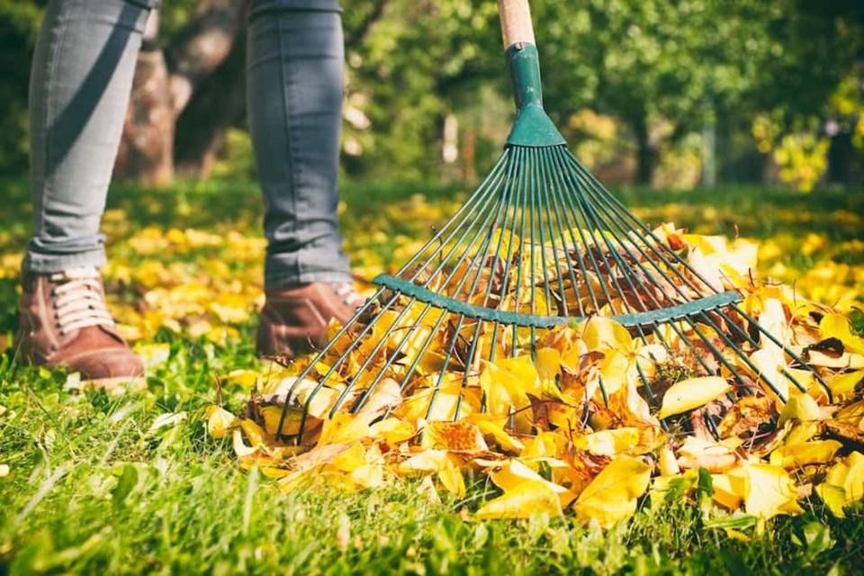 raking-feature
