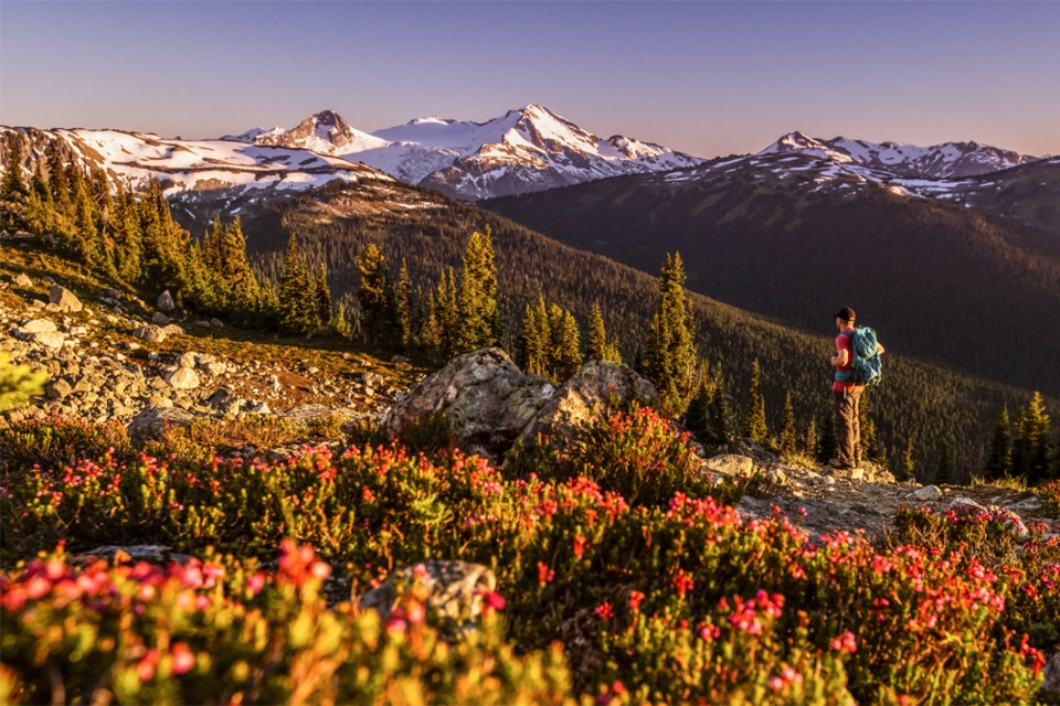 Tourism-Whistler-Summer-Campaign-1