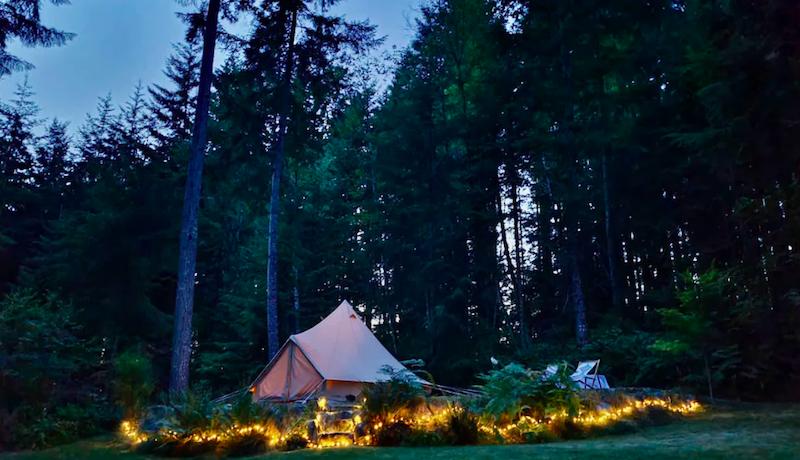 hip-camp-forest-sanctuary.jpg