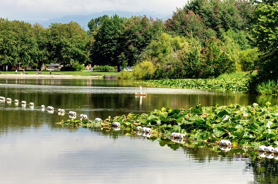 trout-lake-john-hendry-park-vancouver