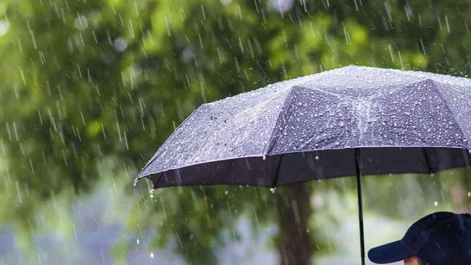 umbrella-rainfall-jan.jpg
