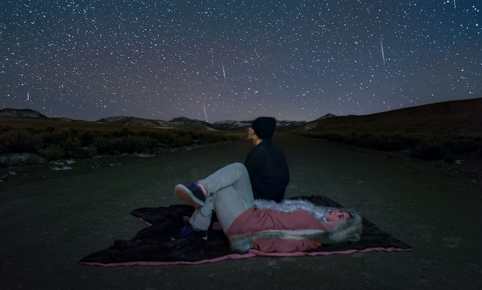 how-to-view-lyrid-meteor-shower-vancouver