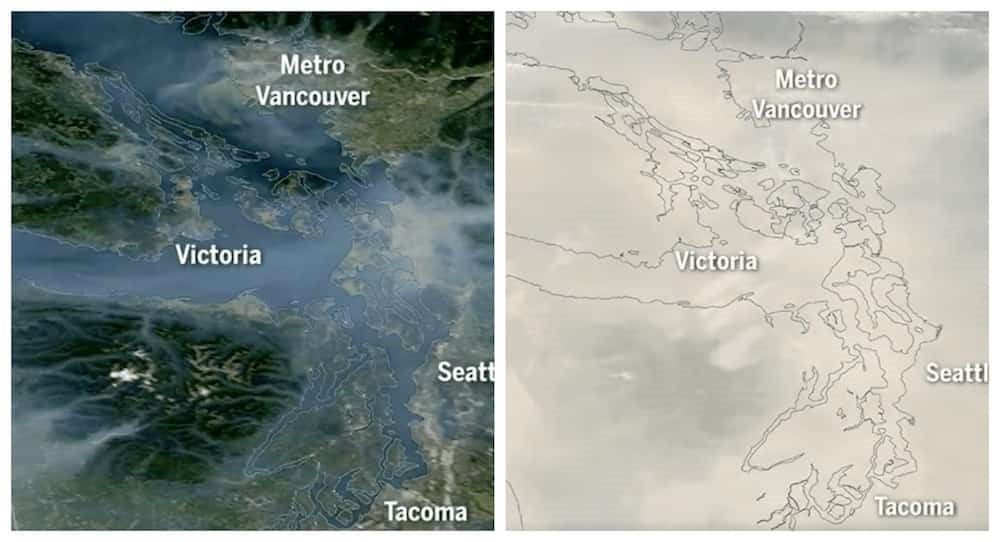Watch the wildfire smoke blanket Metro Vancouver in this satellite time-lapse