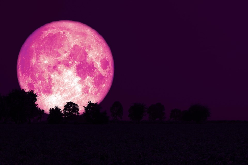 strawberry-supermoon-vancouver-april-2021