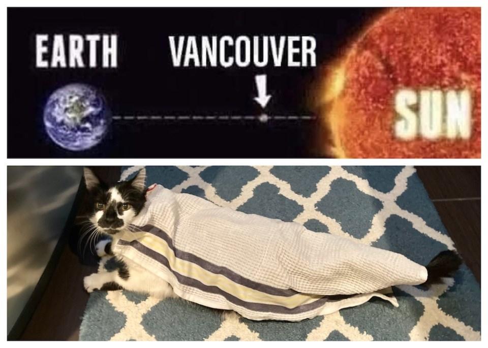 vancouver-heat-wave-june-2021-reaction