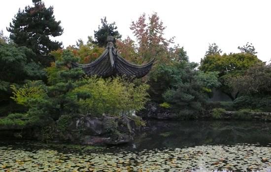 robert_garden