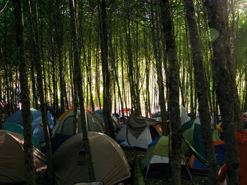 Moo camp at Bass Coast at Squamish Valley Campgrounds