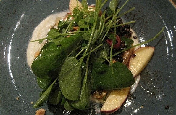 fennel apple spinach salad