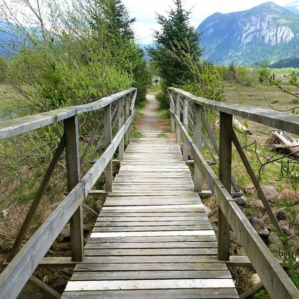 walkingbridge