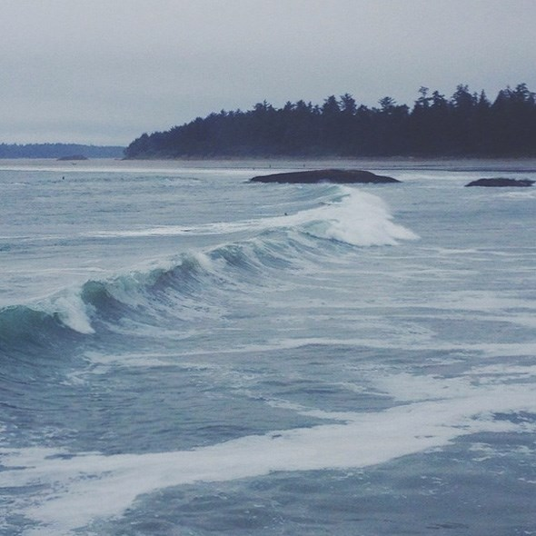 tofino-surf